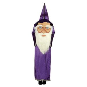 Búningur wizard
